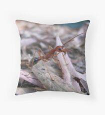 hello bull-ant Throw Pillow