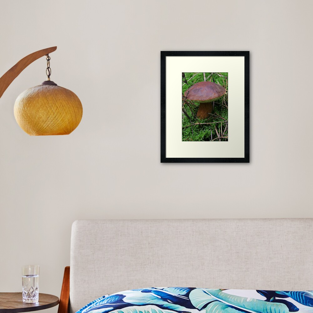 Story about autumn in forest Framed Art Print