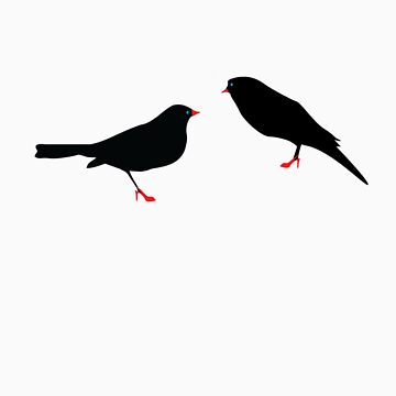 Classy Birds by philreilly