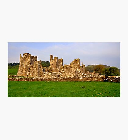 Fore Abbey. Photographic Print
