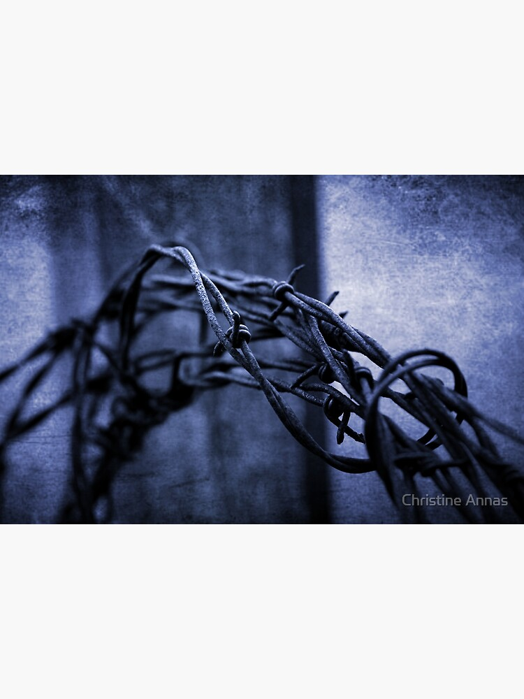 Tangled Up In Blue by 2Bricks