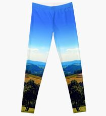 Panoramic view into a summertime scenery Leggings