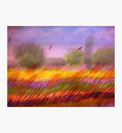 The Colorful Field, watercolor,mixed media Photographic Print