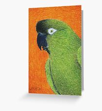 Patagonian Conure - ACEO Greeting Card