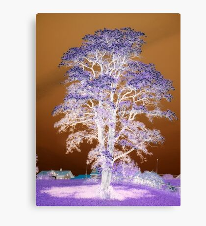 Spring Tree Inversion featured in The Addicted Photographer Canvas Print