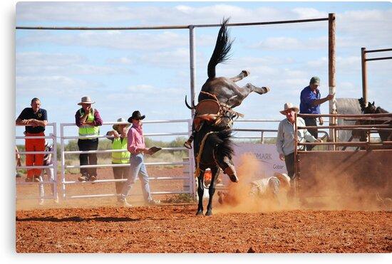 Geronimo by Ruth Anne  Stevens