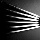 Knives on Black - Still Life by Victoria limerick