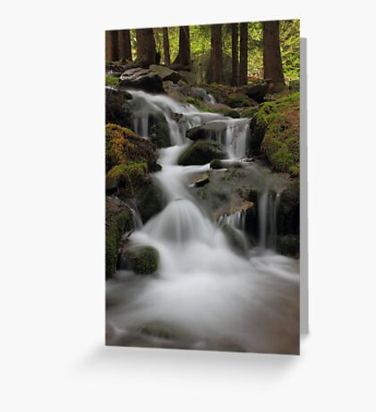 Antrona Valley, National Park Greeting Card