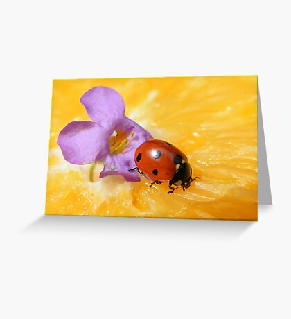 We are colorful combined... Greeting Card