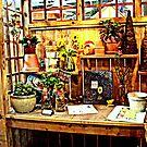 Garden Shop by DALucas