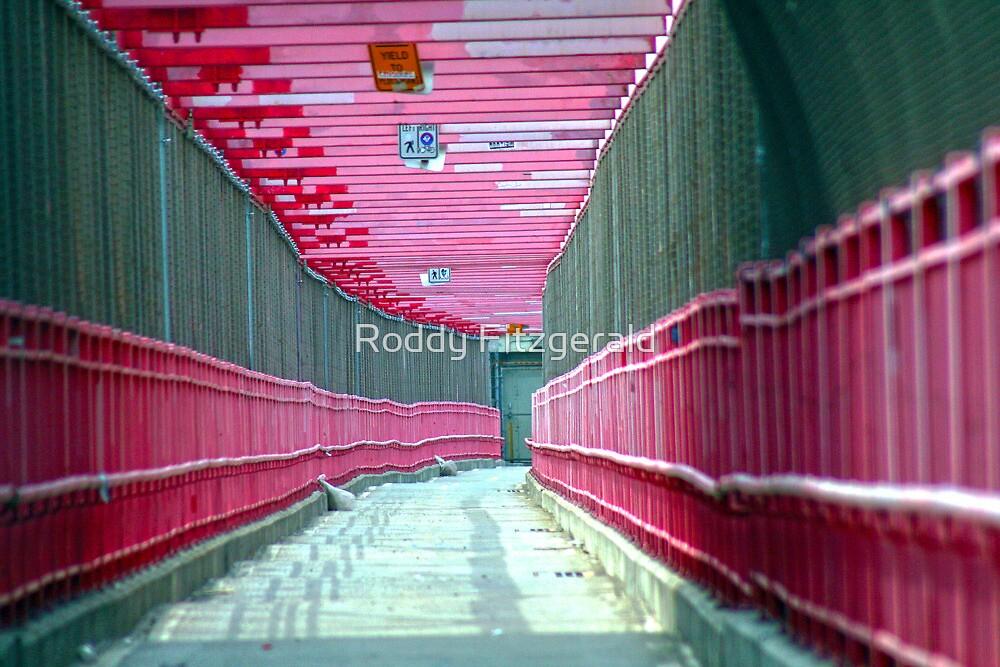 Bridges 1 by Roddy Fitzgerald