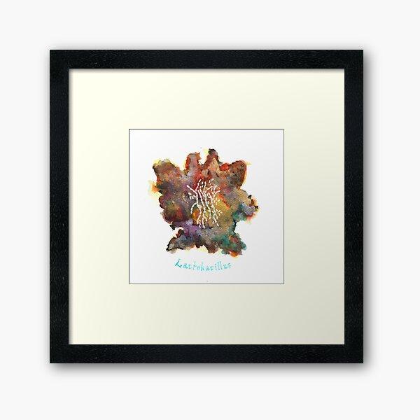 Lactobacillus Art Prints Framed Art Print
