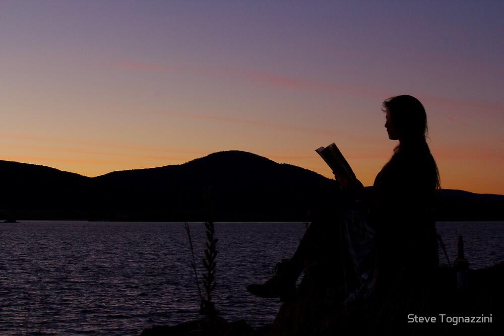 Literature In Solitude by Steve Tognazzini