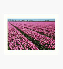 Here they still flowered....... Art Print