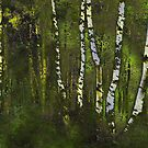 Birches in the spring by Marlies Odehnal