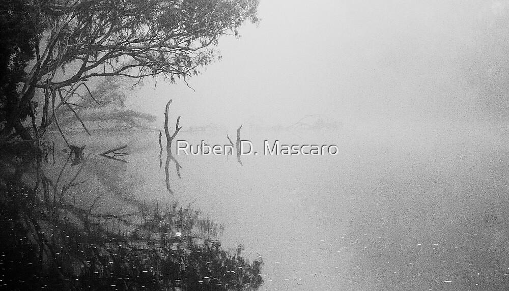 Fog Poker by Ruben D. Mascaro