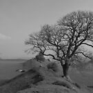 Burrough Hill by Mike Topley