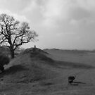 Burrough Hill 2 by Mike Topley