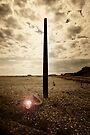 Lamp Post by Nigel Bangert