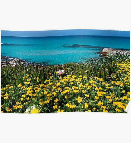Spring on Formentera Poster