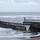 Entrance to Whitby Harbour by Trevor Kersley