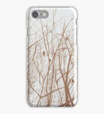 Song iPhone Case/Skin