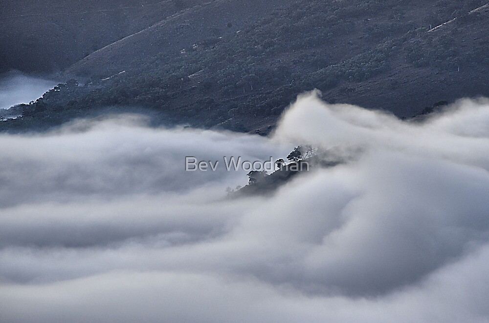 Fog in the Turon Valley - Merlon's Lookout, Hill End NSW by Bev Woodman