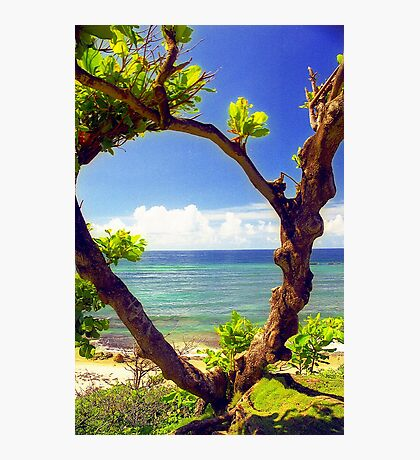 Puerto Rico, Vista Del Mar Photographic Print