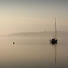 Easter Morning Fog by Diana Nault