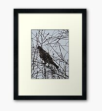 Partridge in a Pussywillow Tree Framed Print