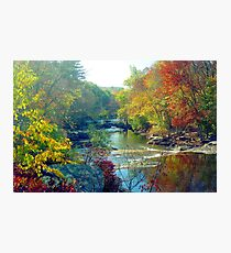 Autumn Foliage in Connecticut Photographic Print