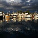 Bermagui Marina by Cathy Middleton