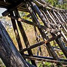Boggy Creek Bridge by Jane Keats
