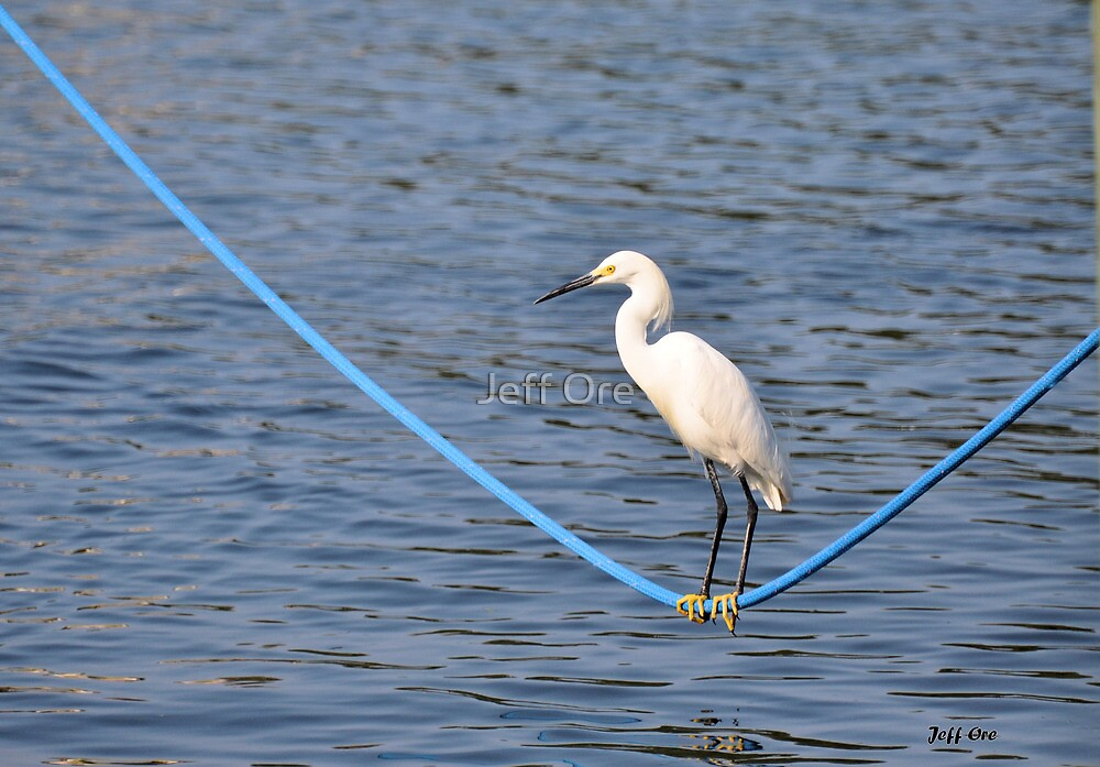 Tightrope Fishing by Jeff Ore