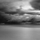 Dark & Light by Mark  Lucey