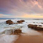Chiton Rocks Charisma by joel Durbridge