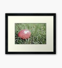 Red Squidgy Ball Framed Print