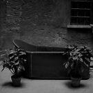 Cenci Tub by pmreed