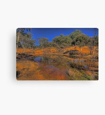 Reflective Memories - Hill End, NSW Australia - The HDR Experience Canvas Print