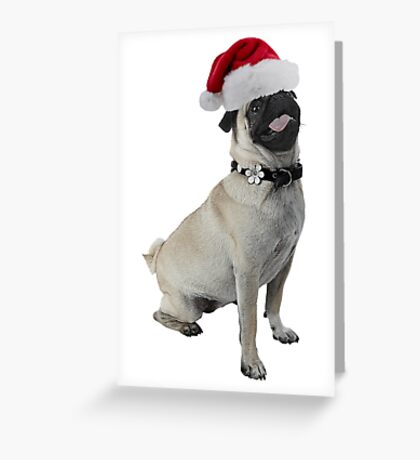 Pug Dog Christmas Greeting Card