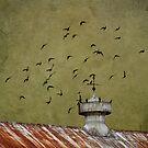 Silo Birds by martinilogic