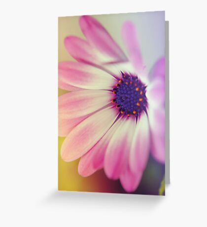 Oh Daisy  Greeting Card
