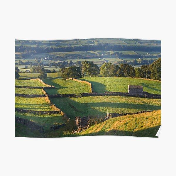Morning Light near Askrigg - Yorkshire Dales Poster
