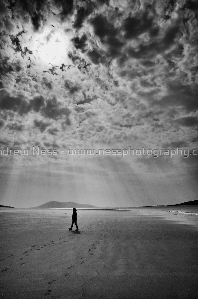 Stepping Through Sunshine by Andrew Ness - www.nessphotography.com