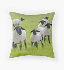 Suffolk Sheep Throw Pillow