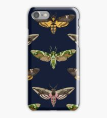 Hawk Moths 1 iPhone Case/Skin