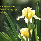 Brighten My Day by DebbieCHayes