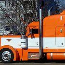 Orange Ride! by PatChristensen