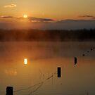 Spring sunrise by Breanna Stewart