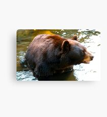 Appalachian Pride Canvas Print